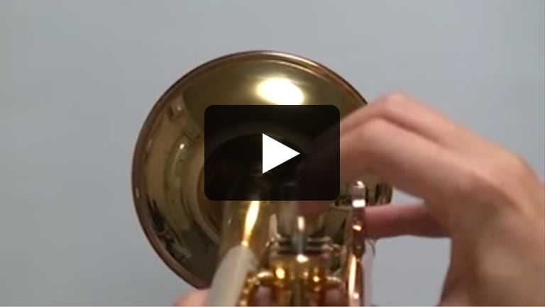 SILENT Brass™ - Sound with Brass Resonance Modeling™