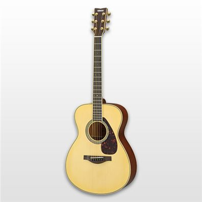 Acoustic Guitars - Guitars & Basses - Musical Instruments