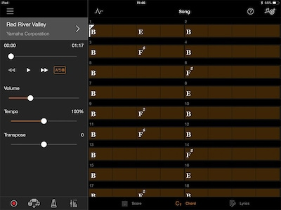 Play your favorite songs right away with chord progression